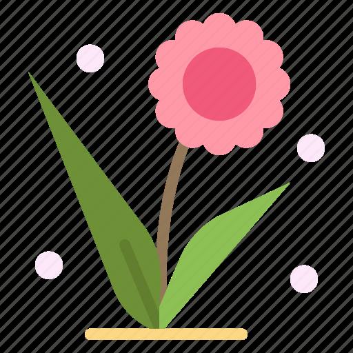Flora, floral, flower, nature, spring icon - Download on Iconfinder
