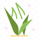 grass, grasses, green, spring icon