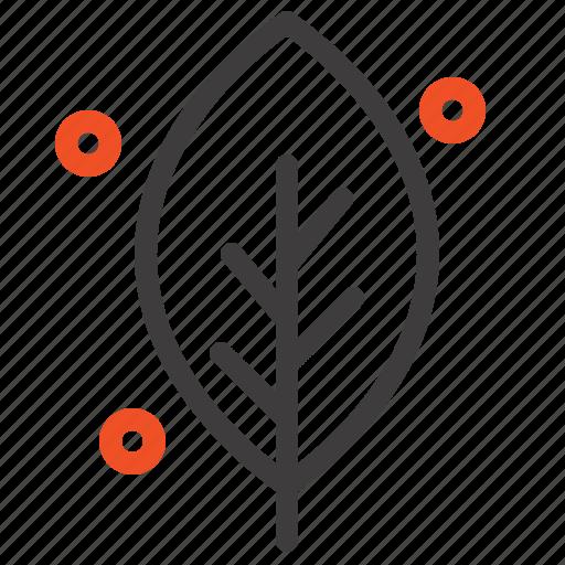 ecology, leaf, nature, spring icon