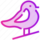 bird, fly, spring icon