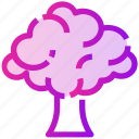 broccoli, nature, spring, tree, vegetables icon