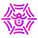hunter, insect, net, spider, spring, trap icon