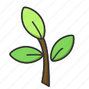 leaf, nature, plant, spring, tree icon