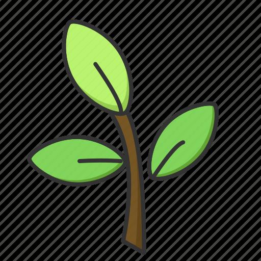 leaf, nature, plant, spring, tree icon