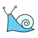animal, nature, snail icon