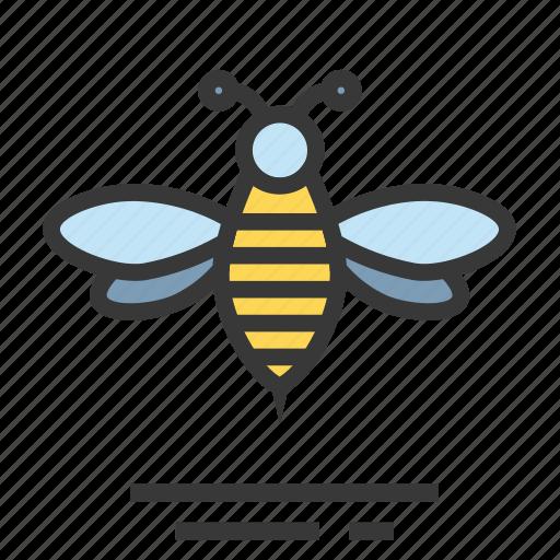 bee, easter, season, spring icon