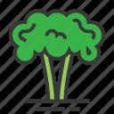 broccoli, easter, plant, season, spring, vegetable icon