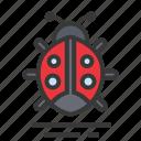 easter, ladybug, season, spring icon