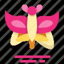 butterfly, easter, farming, season, spring