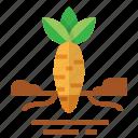 carrot, easter, farming, season, spring icon