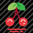 cherry, easter, farming, season, spring icon