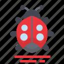 easter, farming, ladybug, season, spring icon