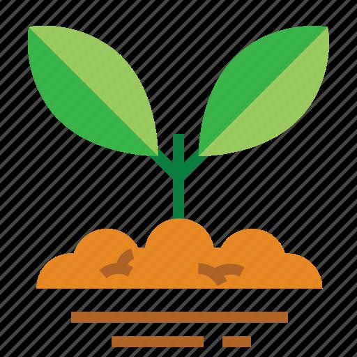 easter, farming, plant, season, seeds, spring icon