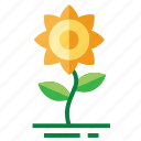 easter, farming, flower, season, spring, sunflower icon