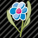 bloom, daisy, flower, garden, leaves, spring, ecology