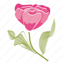 ecology, environment, flower, garden, leaves, rose, spring icon
