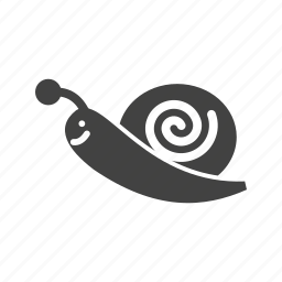 animal, garden, shell, slow, small, snail, spring icon