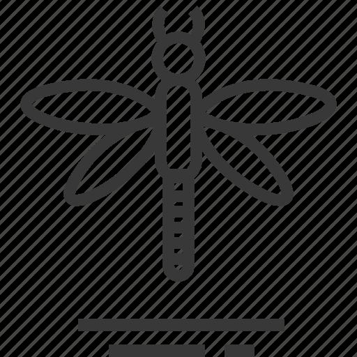 dragon, easter, fly, season, spring icon