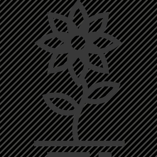 easter, flower, season, spring icon