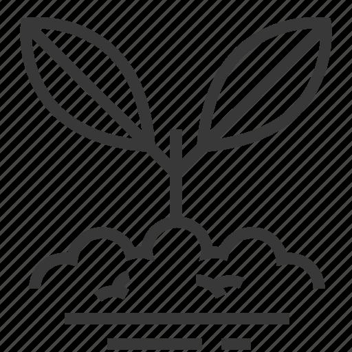 easter, plant, season, seeds, spring icon