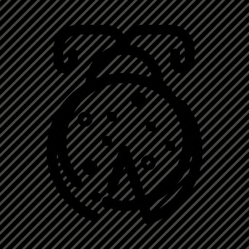 Beetle, bug, ladybird, ladybug icon - Download on Iconfinder