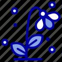 flora, floral, flower, nature, spring