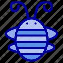 bee, beetle, bug, insect, ladybird, ladybug