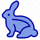 bunny, easter, rabbit