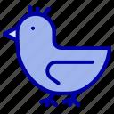 duck, goose, spring, swan icon