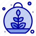 growing, leaf, plant, spring