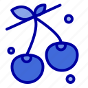 berry, cherry, food, spring icon