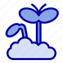 growth, increase, maturity, plant icon