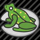 amphibian, animal, frog, nature icon