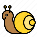 animal, shell, snail, spring