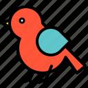 animal, bird, spring, wing icon