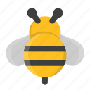 bee, bumble bee, fly, honey, honey bee, insect, spring