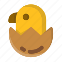 animal, chick, chick hatching, egg, hatch, hatching, spring icon