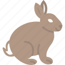 bunny, mammal, pet, rabbit, wildlife icon