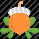 chestnut, food, hazelnut, nut, nuts icon