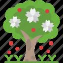 ecology, garden, spring, tree, yard icon