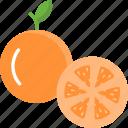 diet, food, fruit, orange, vegan icon