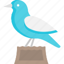 animal, bird, peace, pigeon, wings icon