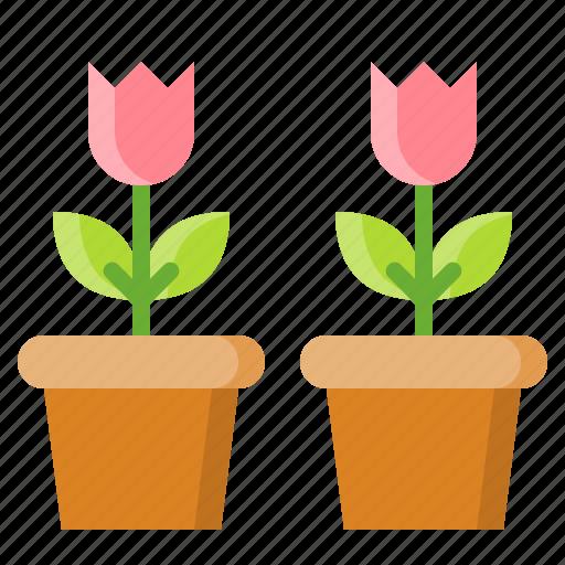 Floral, flower, flower pot, nature, pot, spring icon - Download on Iconfinder