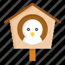 bird, spring, birdhouse, nest