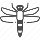 dragon fly, insect, insects, wings icon