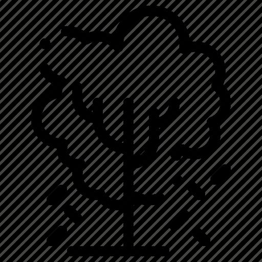 apple, nature, spring, tree icon
