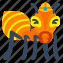 ant, ants, bug, macro, nature icon