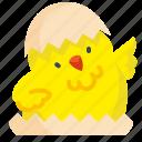 animal, chick, chicken, cute, egg icon