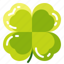 clover, green, leaf, luck, plant
