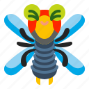 dragonfly, fly, insect, nature, summer icon